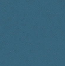 Pacific sinine (9)