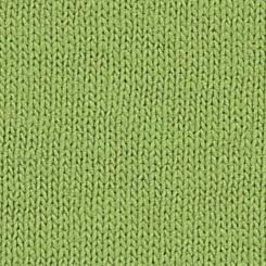 Kiwi (Roheline) (1)