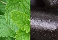 Mint & liquorice (piparmünt ja lagrits)