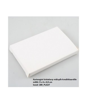 """Kinkekarp mälupulk-krediitkaardile """"Plaat"""" 9 x 6 x 0,9 cm"""