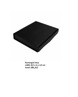 USB Kinkekarp, kartongist 8,5 x 11 x 2,5 cm