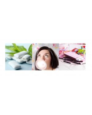 "Närimiskumm 12tk/pk ""Chewing Gum"""