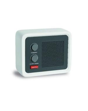 "Raadio ""Ice Radio"""